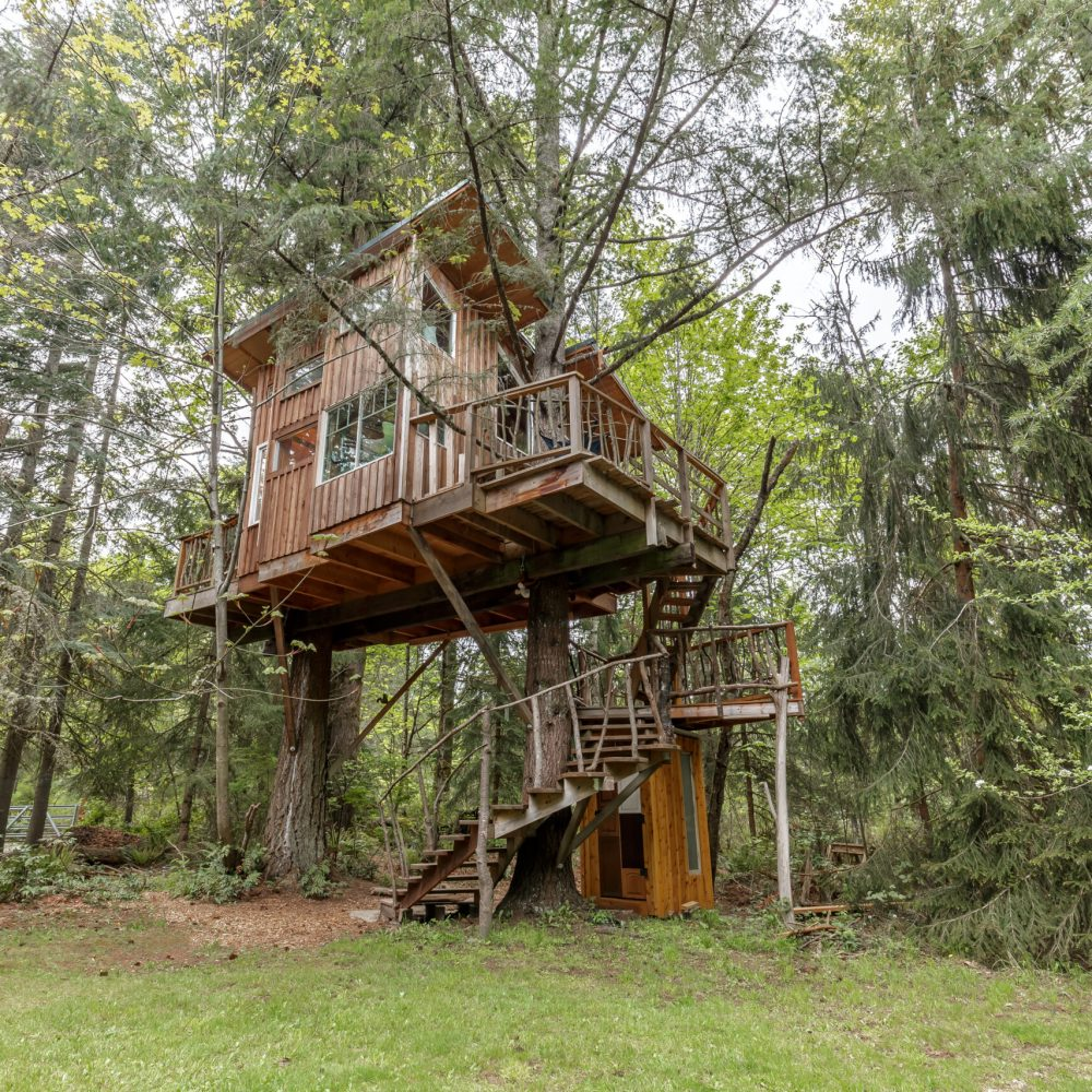 treehouse (1 of 16)